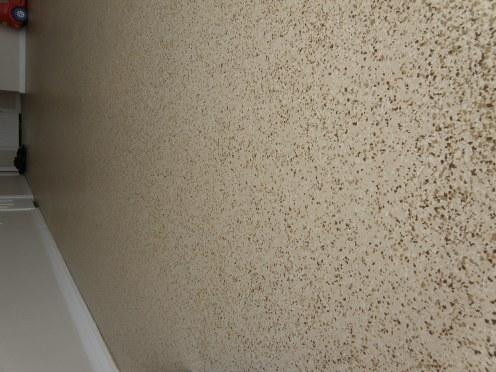 Garage epoxy flaked